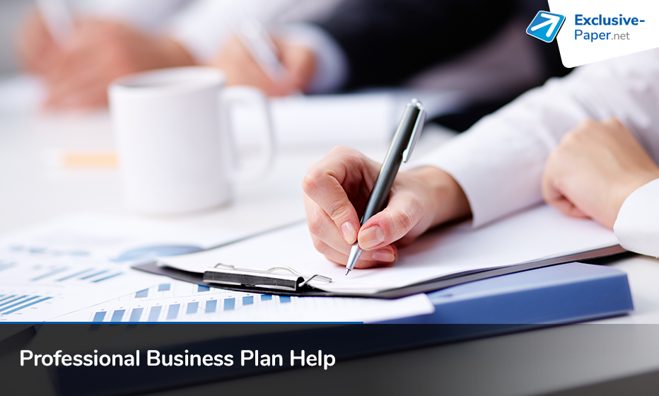 Professional Business Plan Help