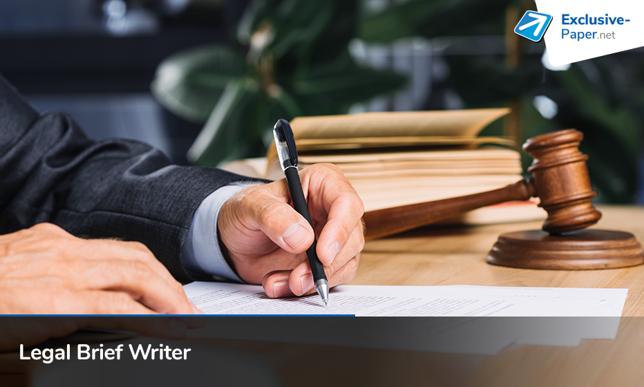 Expert Writing Help from Legal Brief Writer